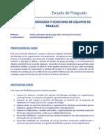 Liderazgo y Coaching M.sanfuentes MBAICCI 2013F