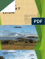 Sabana Pradera y Estepa