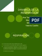 Dinamica de La Respiracion