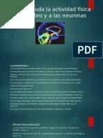 Como ayuda la actividad física al cerebro y.pptx