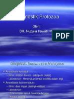 Diagnostik Protozoa 2
