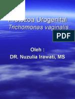Protozoa Urogenital Trich Vaginalis