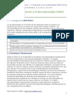 Apuntes-Neuropsicologia