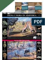 Fauna Yflora de Atapuerca (Diario de Atapuerca)