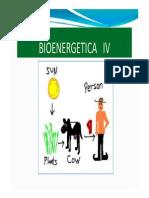Bioenergetica 4 2013 i