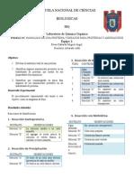 Practica 12 y Ensayos Para Proteinas y Aminoacidos(1)