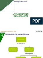 2CN 59 2P Clasifplantas