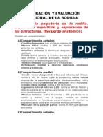 Rodilla. Exploración y Evaluación Funcional