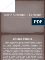 Bolile Sistemului Excretor