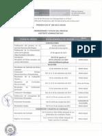 CAS 2015 109 Cronograma