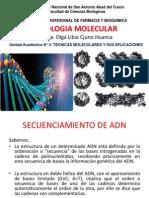 Biologia Molecular Vi Tecnicas
