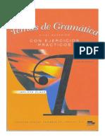 Temas de Gramatica Con Ejercicios Practicos
