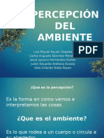 2 Percepcion Del Ambiente