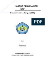 sap DHF.doc