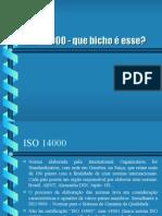 ISO 14000 o Que é Isso
