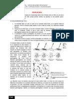 Tareas Microbilogia y Parasitologia (2015) - Copia