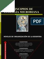 Microbiologia Ambiental. Ecologia Microbiana