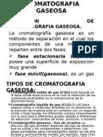5 - Cromatografia Gaseosa Exposicion