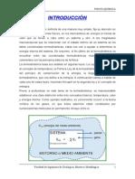 1er Informe - Termodinámica