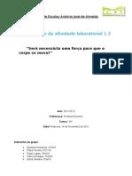 Relatorio de Fisica a.L. 1.2
