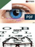 Anaotmia y Fisiologiěa Ojo