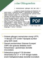 Glikogenesis Dan Glikogenolisis