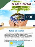Salud Ambientalll