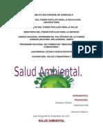 Salud Ambiental.