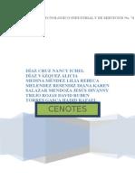 Proyecto Cenotes Actual