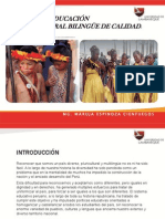 Hacia Una Educación Intercultural Bilingue de Calidad.