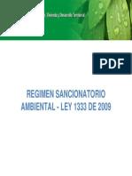 Regimen Sancionatorio Ambiental