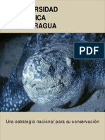 Bio Divers i Dad Nicaragua