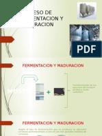 Proceso de Fermentacion y Maduracion (2)