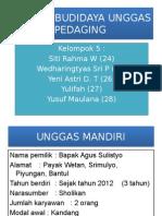 Produk Budidaya Unggas Pedaging