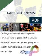 KARSINOGENESIS