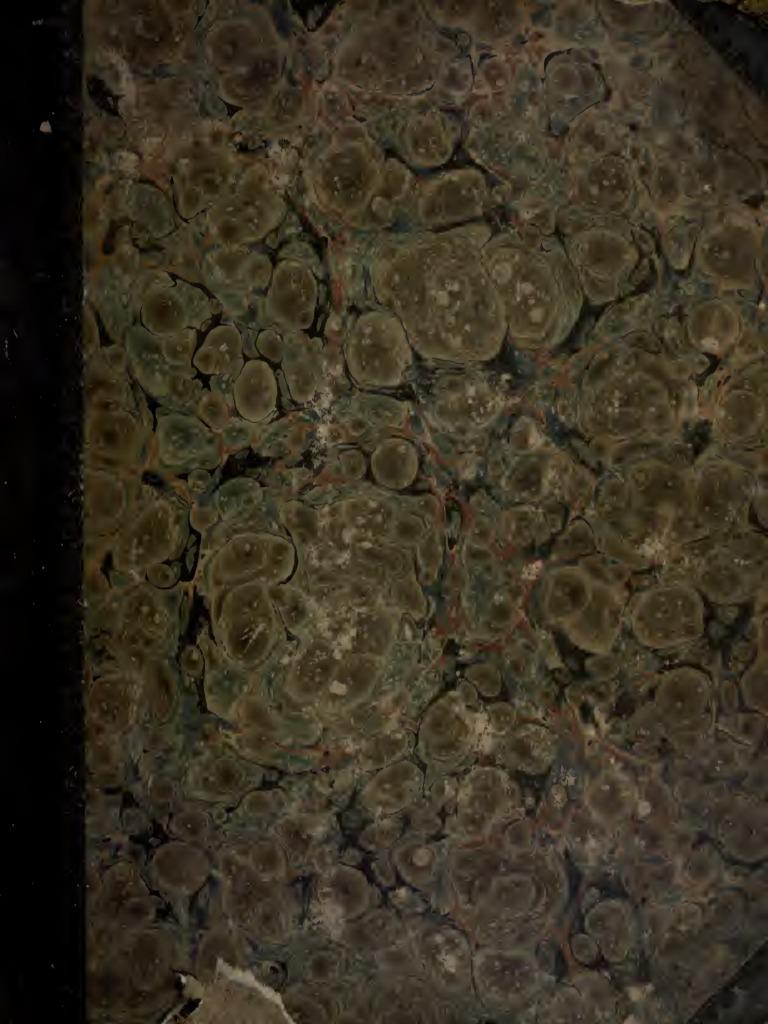 "fabrication carte embelishments Clover Leaf Large Craft Punch 1/"" 2,5 cm JONQUILLE"