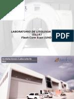 LABORATORIO DE LITOLOGIA DIGITAL (DLL)..pptx