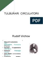 TULBURARI CIRCULATORII