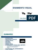Entrenamiento Visual