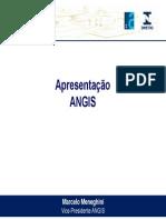ENOAC 09 Visao Associacoes Marcelo Meneghini