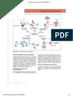 6Imunologia e Microbiologia 1ed-1014615-TDAB2C121