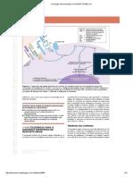 7Imunologia e Microbiologia 1ed-1014615-TDAB2C121