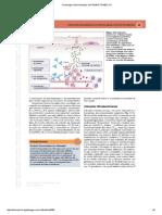 9Imunologia e Microbiologia 1ed-1014615-TDAB2C121