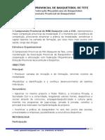 Projecto Campeonato Provincial de MINI Basquete Com a ICVL
