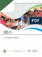 Los Programas Estratégicos del sector público