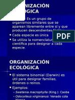 ECOLOGIA ECOSISTEMAS