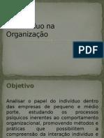 O Indivíduo na Organização
