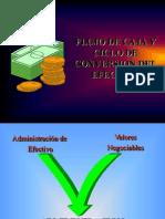 CICLO-DE-CONVERSION-DEL-EFECTIVO.pdf