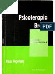 Psicoterapia Breve - Mauro Hegenberg