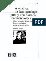 fenomenología_S6